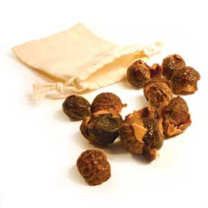 What is a Soap Nut?   A Real Food Lover